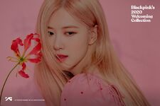 Rosé for Blackpink's 2020 Welcoming Collection