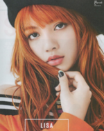 Lisa for Japan Mini Magazine