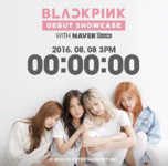 Black Pink Square One Showcase