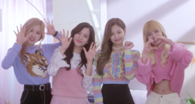 Black Pink Channel Plus 4