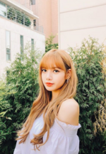 Lisa IG Update 181119 2