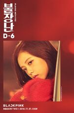 Jisoo Playing with Fire Promotional Picture