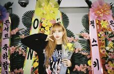 Lisa IG Update 181114 3