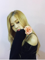 Rosé with a rose2
