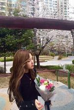 Rosé Park CH + Update 5