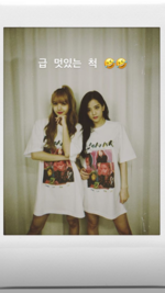 Jisoo IG Story Update with Lisa 180725 4