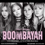BLACK PINK Boombayah cover