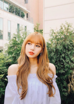 Lisa IG Update 181119 3