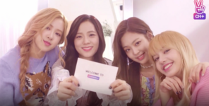 Black Pink Channel Plus 2
