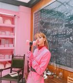 Lisa IG Update 190618 (1)