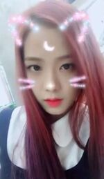 Jisoo Snow IG Update 3