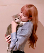 Lisa IG Update 180701 3