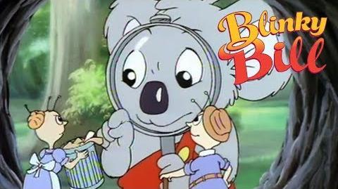 Blinky Bill - Episode 27 - Blinky Meets Mr