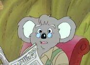Mr.Koala 6
