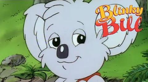 Blinky Bill - Episode 5 - Blinky Bill The Teacher
