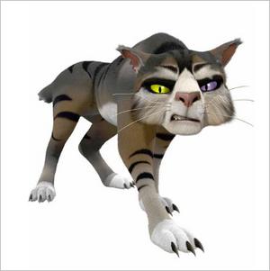 Grey Panther