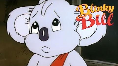 Blinky Bill's Zoo