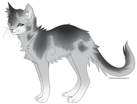 Silver cat adoptable closed by rcl adopts-d9twec8