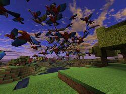Birdsgroup