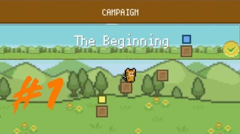 Campaign - The Beginning