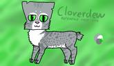Cloverdew ref