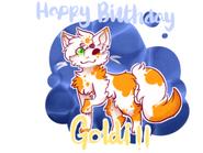 Goldis-B-day-300x225