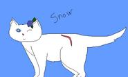 Snowpuff Warrior Cats fursona request art