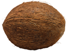Coconut-PNG-File