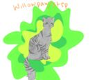 Willowpaw (Willowstep)