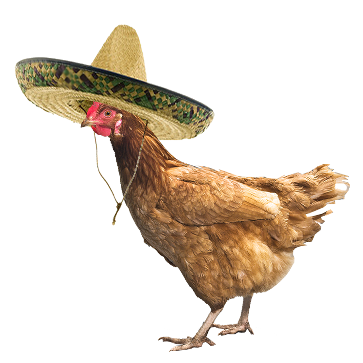Warriors A Vision Of Shadows Allegiances: Chicken With A Sombrero By Muffinzor-d870ti4.png