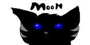 Moonstripe Warrior Cats OC