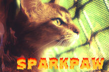 Sparkpaw1