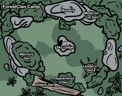 ForestClanCampVer3
