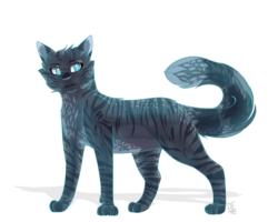 Jayfeather by doctor enderman-d94w2fy