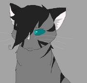 SWoRB's character