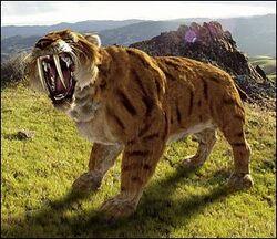 Sai-Tooth Felyx