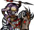Zebra Rider II