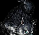 Dire Wolf II