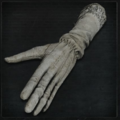 Surgical Long Gloves.png
