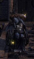 Wheelchair Huntsman Rifle 3