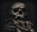 Laurence's Skull