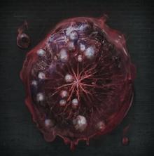 Cursed Tempering Damp Blood Gem