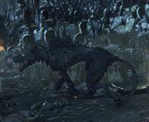 Hunting Dog №7