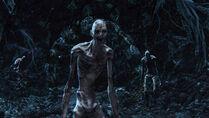 Labyrinth Watcher (group)