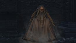 Chalice Ghost pic taken by Meph- Bloodborne-wiki