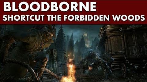 Bloodborne Shortcuts - Forbidden Woods Shortcut -1 - Elevator + Door