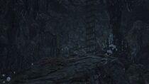 Forbidden Woods 9