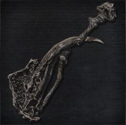 Amygdalan Arm