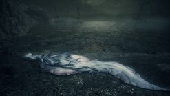 The corpse of Kos