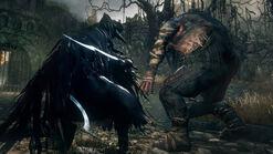 Raven hunter fight